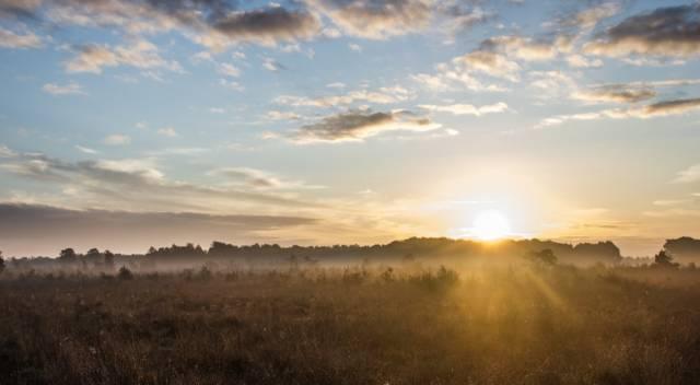 太陽光発電で余剰買取を選んだ理由 電気代上昇のリスク