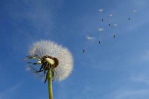 扇風機-子供-対策